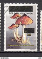 Congo, Champignon, Mushroom, Surimpression, Overprint - Mushrooms