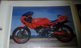 Carte Postale Moto Divers Italienne - Motor Bikes