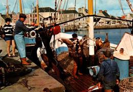 CPM - St VAAST-La-HOUGUE - Retour De Pêche Sur La Côte ... - Edition Le Goubey - Saint Vaast La Hougue