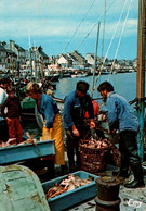 CPM - St VAAST-La-HOUGUE - Retour De Pêche ... - Edition Le Goubey - Saint Vaast La Hougue