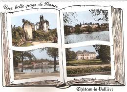 CPSM DE CHATEAU LA VALLIERE - Otros Municipios