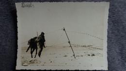 PHOTO D  AFRIQUE DU NORD ALGERIE ? SOLDAT MILITAIRE BARBELE  FORMAT 11.5 PAR 8.5 CM OCCUPATION FRANCAISE - Plaatsen