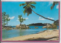 ANSE BOUDIN PRASLIN SEYCHELLES - Seychelles