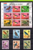 Mwe2762b FAUNA VOGELS AUDUBON PARROT WOODPECKER HOCCO BIRDS VÖGEL AVES OISEAUX PARAGUAY 1985 Gebr/used - Collections, Lots & Séries