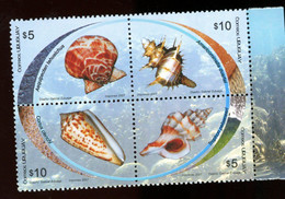 Uruguay 2007-Coquillages-2317/20***MNH - Conchiglie