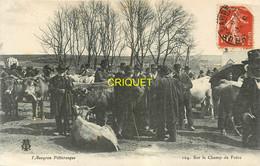 12 Série L'Aveyron Pittoresque, Sur Le Champ De Foire, Affranchie 1910, Beau Plan Des Marchands De Bestiaux - Other Municipalities
