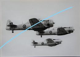 Photox5 Force Aérienne Luchtmacht North Armerican T6 Circa 1950 Aviation Avion Vliegtuig Harvard - Aviazione