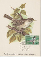 Chypre Carte Maximum Oiseau 1969 Warbler 316 - Storia Postale