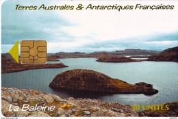 TELECARTE NEUVE 50 UT LA BALEINE - TAAF - French Southern And Antarctic Lands