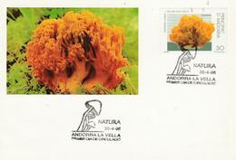 ANDORRE ESPAGNOL FDC 1996 CHAMPIGNON - Storia Postale