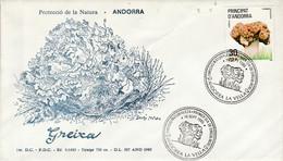 ANDORRE ESPAGNOL FDC 1985 CHAMPIGNON - Storia Postale