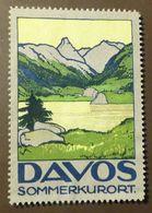Werbemarke Cinderella Poster Stamp    Davos Sommerkurort     #307 - Erinofilia