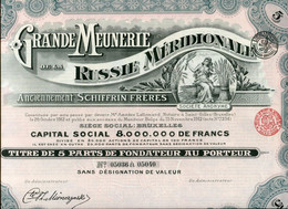 GRANDE MEUNERIE De La RUSSIE MÉRIDIONALE; Five Founder Shares - Russia