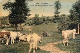 Pâturage Dans Les Montagnes Du Doubs. Couleurs, Toilée, Vernie. Edit Faivre-Locca à Pontarlier. Circ En 1913. B E. - Other Municipalities