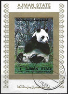 Ajman 1973 - Mi 2838 - YT Xxx ( Panda ) Block Imperforated - Orsi
