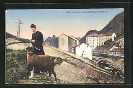 AK Grand St. Bernard, Monument Et Hospice - VS Wallis