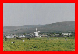 CPSM/gf TRALEE (Irlande)  Windmill At Blennerville, Moulin à Vent, Vaches...L934 - Kerry
