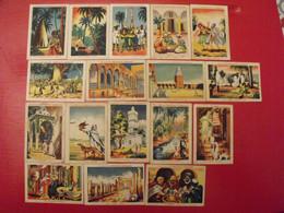 17 Images Chocolat Lombart. Lot 318. Album Colonies Françaises Algérie Tunisie. Vers 1950. - Otros