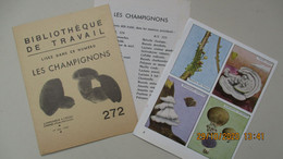 P. BERNARDIN /  3ème Série Des CHAMPIGNONS / BT N° 272  LES VIGNETTES C.E.L.(sans Les Fiches) - Other