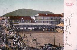 Panama - Bull Fight - Panama