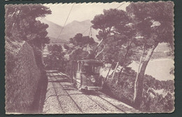 N°36 - Menton - La Ligne Du Tram De Cap Martin à Travers Les Pins    - Lan 65 - Menton