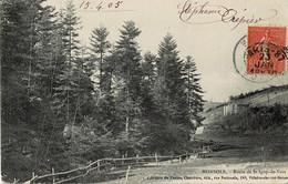 Monsols Route De St-Igny-de-Vers Circulée En 1905 - Altri Comuni