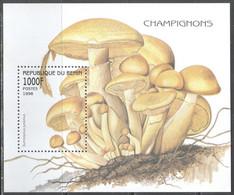 M3579 ✅ Flora Mushrooms Fungi 1998 Benin S/s MNH ** 4.5ME - Funghi