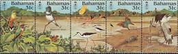 BAHAMAS - Oiseaux, Papillon, Tortue - Bahama's (1973-...)