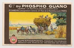 PUB ENGRAIS CHIMIQUE PHOSHO GUANO / ATTELAGE CHEVAUX AGRICULTURE / LA ROCHELLE PALLICE ET HONFLEUR C1564 - Cultivation
