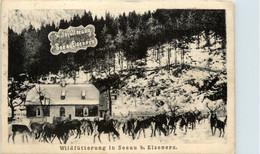 Eisenerz/Steiermark - Wildfütterung In Seeau B. Eisenerz - Eisenerz