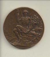 Médaille En Bronze Chambre De Commerce Arrondissements De Vienne Et De La Tour Du Pin (38) ( Graveur Ch Marey ) - Professionals / Firms