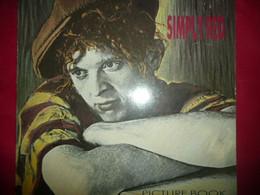 LP33 N°6732 - SIMPLY RED - 960 452 - Disco, Pop