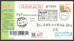 China HeiHe COVID-19 PMK((Blocking The Source, Early Treatment, No Rumors);(NCP=Novel Coronavirus Pneumonia Epidemic) - Malattie