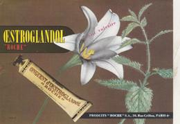 TRES BEAU BUVARD, OESTROGLANDOL, Prurit Vulvaire,  Produits ROCHE à PARIS - 010 - Unclassified