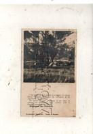 Lourmarin (84) : Tentes Du Groupe Bonaparte Du Chantier De Jeunesse à Régalon En 1947 PF. - Lourmarin