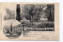 DC4861 - Gruss Vom Forsthaus Guttenberg Markt Reichenberg Festplatz - Altri