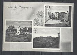CAMPAGNATICO (GROSSETO) 1955 - VEDUTE - Otras Ciudades