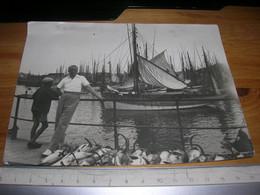Grande Photo Dans Le Port De Concarneau Retour De Peche Au Thon Etat Correct 12x17 - Concarneau