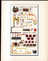 Planche De La Fabrication De La Rayonne Viscose . Format 31 X 24 Cm - Tools