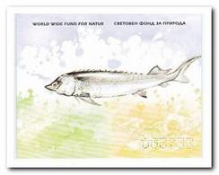 Bulgarije 2004, Postfrs MNH, WWF, Fish - Nuevos