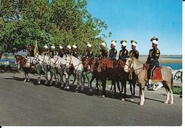 Soudan. CPM. L'Armée Sudanaise (The Sudanese Army) (animée, Cavaliers, Uniformes) - Sudan