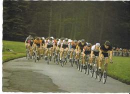 CP ORSZAGUTI KEREKPARVERSENY - Cycling