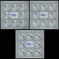 Russia Russland Russie 2011 XXII Winter Olympics, Sochi. Winter Sports. Set Of 3 Sheetlets. MNH ** - Ongebruikt