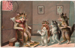 ANIMAUX. CHATS HUMANISES. GRAND-PERE Ou GRAND-MERE RECEVANT Des CADEAUX. 1906. - Katten