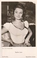 Cinéma     Sophia Loren - Actores