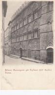 SIENA-PALAZZO BUONSIGNORI-CARTOLINA NON VIAGGIATA -1900-1904 - Siena