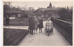 Photographie Particulier Angleterre Londres Zoo De Londrès Groupe De Personnes Et Handicapé   1929 Ref 1573 - Non Classificati