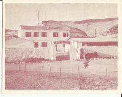 S.A.S. De AIN ROMANA (Algérie) Sections Administratives Spécialisées En Algérie (SAS) Carte Voeux Années 50 - Andere