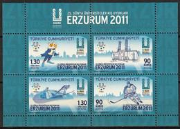 2011 Turkey World Universiade Winter Games In Erzurum Minisheet (** / MNH / UMM) - Winter (Other)
