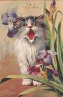 Cpa IRIS ELOQUENCE 1905 - Katzen